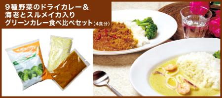 9種野菜のドライカレー&海老とスルメイカ入りグリーンカレー食べ比べセット